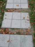 Chemin d'automne photo libre de droits