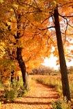Chemin d'automne Photographie stock libre de droits