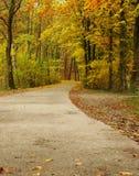 Chemin d'automne dans la forêt Photos stock