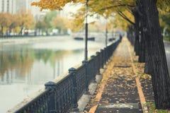 Chemin d'automne par le fleuve urbain Photographie stock
