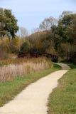 Chemin d'enroulement dans l'automne Image stock