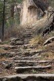 Chemin d'escaliers de montagne Images stock