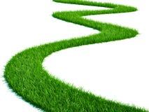 Chemin d'herbe illustration stock