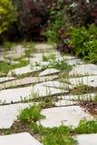 Chemin d'isolement de dalle avec la verdure environnante Photo libre de droits