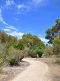 Chemin dans l'Australien Bushland Images libres de droits