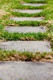 Chemin dans l'herbe Photos libres de droits