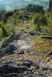 Chemin dans la montagne Photo libre de droits