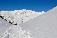 Chemin dans la neige Photos stock