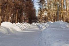 Chemin dans la neige Images stock