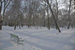 Chemin dans la neige avec le banc et les arbres Photo stock
