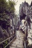 Chemin dans la pierre Forest Shilin, Chine images libres de droits
