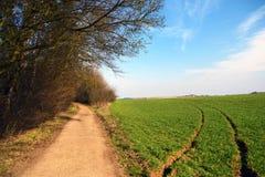 Chemin dans la première journée de printemps Image libre de droits