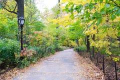 Chemin dans la promenade Photo libre de droits