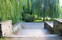 Chemin dans le jardin Photo libre de droits
