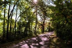 Chemin dans le parc Photos stock