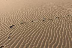 Chemin dans le sable Photographie stock