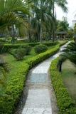 Chemin dans un jardin images stock