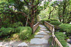 Chemin dans un jardin Photo stock