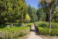 Chemin dans un jardin botanique Été portugal Photo stock