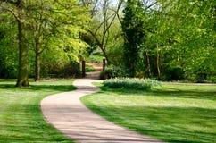 Chemin dans un parc Images libres de droits