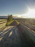 Chemin de bicyclette avec le soleil dans le matin Image stock