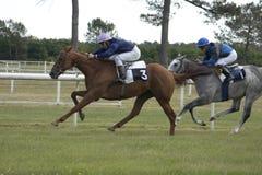 Chemin de cheval images stock