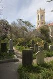 Chemin de cimetière Image stock