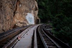 Chemin de fer à la jungle Photographie stock