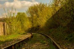 Chemin de fer abandonné parmi les arbres verts Photos libres de droits