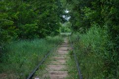 Chemin de fer abandonn? Un site une fois-animé envahi avec l'herbe et les arbres affaiblissement photographie stock