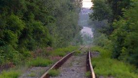Chemin de fer dans la for?t banque de vidéos