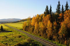 Chemin de fer de l'Alaska en automne Photos stock