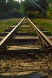 Chemin de fer mince dans une forêt photographie stock