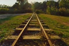 Chemin de fer mince dans une forêt image stock