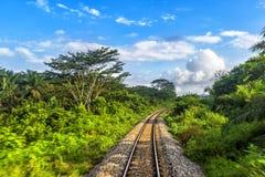 Chemin de fer de Singapour vers Bangkok dans la jungle de la Malaisie image libre de droits
