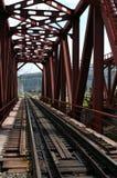 Chemin de fer transsibérien Photo stock