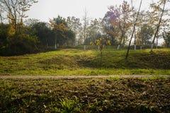 Chemin de Hillside dans l'herbe et les mauvaises herbes du matin ensoleillé d'hiver photos libres de droits