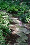 Chemin de jardin Image libre de droits