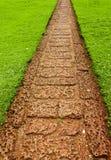 Chemin de jardin avec l'herbe grandissant entre les pierres Photos libres de droits
