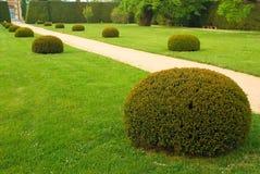 Chemin de jardin, stationnement vert images stock