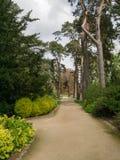 Chemin de jardin sur le domaine de Sandringham Photo stock