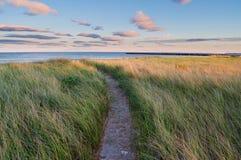 Chemin de l'île de Drake Photos stock