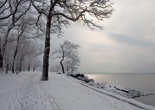 Chemin de l'hiver Photo libre de droits