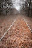 Chemin de mélancolie Photos libres de droits