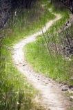 Chemin de marche Photographie stock libre de droits