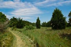 Chemin de marche Photo libre de droits