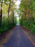 Chemin de marche dans les bois Photos libres de droits
