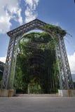Chemin de marche de voûte d'arbre dans le jardin national de la ville Thaïlande de Chiangmai Photos stock