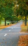 Chemin de marche en automne Photo libre de droits