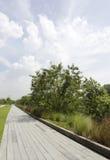 Chemin de marche et de recyclage Image stock